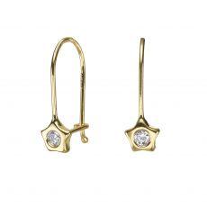 Earrings - Shining Star