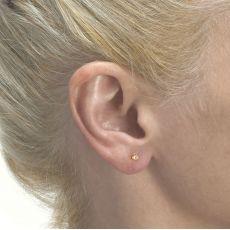 Gold Stud Earrings -  Flower of Florian - Small