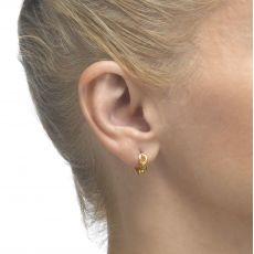 Huggie Gold Earrings - Song Bird