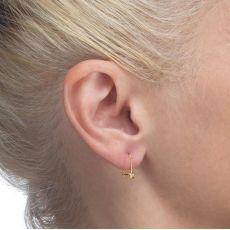 Dangle Earrings in14K Yellow Gold - Neptune Star