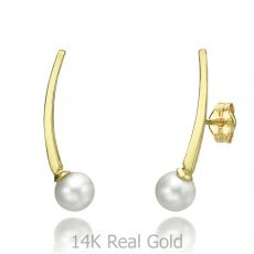 Climbing Earrings in 14K Yellow Gold - Eridanus