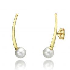14K Yellow Gold Women's Earrings - Eridanus