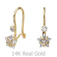 Dangle Earrings in14K Yellow Gold - Northern Star