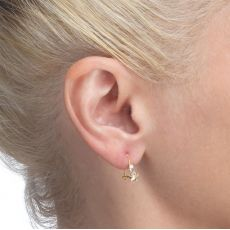Dangle Earrings in14K Yellow Gold - Northern Star