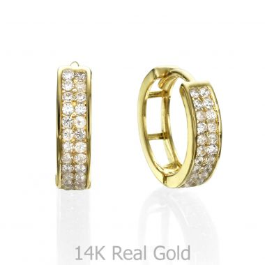 Huggie Gold Earrings - North Star