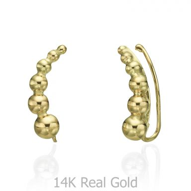 14K Yellow Gold Women's Earrings - Andromeda