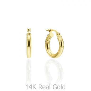 14K Yellow Gold Women's Earrings - S