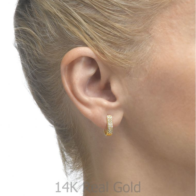 Huggie Gold Earrings - Hollywood