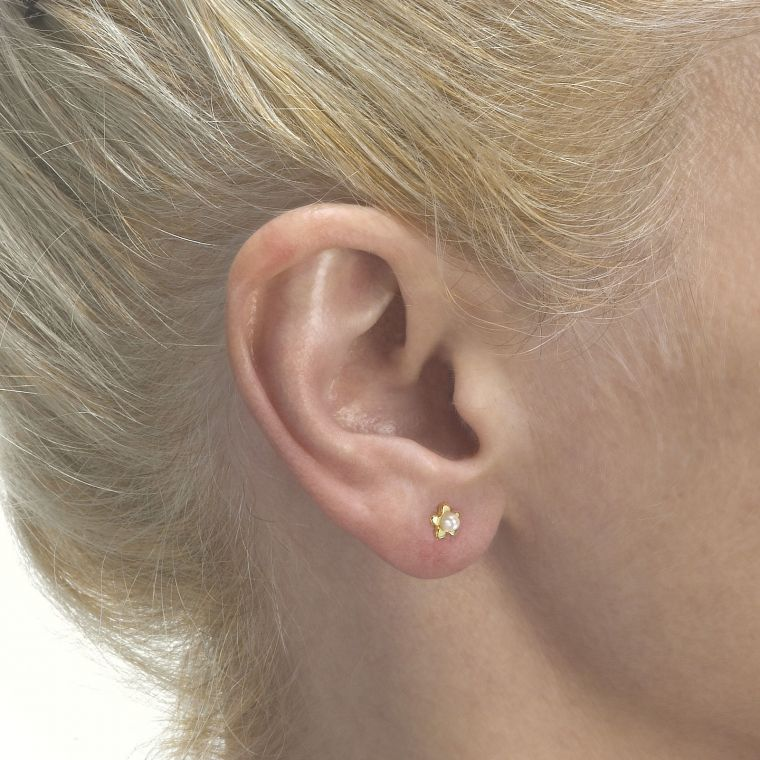 Gold Stud Earrings -  Star of Pearl